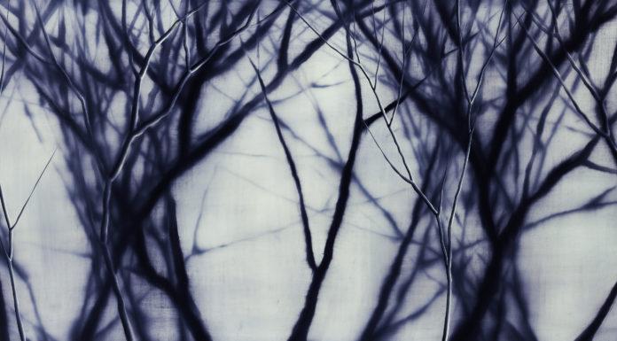 Мош Каши, Фиолетовый лес